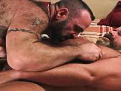 Quick Bear Jerk Off - Alpha Porno