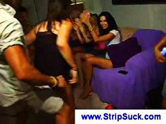 Thumb: Party girls watch this...