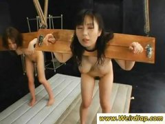 Two Asian slaves are bound and get fucked ...