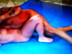 Nude Mixed Wrestling video