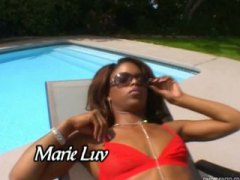 marie luv,  cock, ebony, white, big-cock,