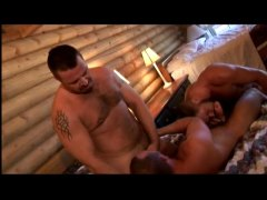 Hairy bears threesome video