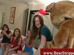 party, bear, blowjob, voyeur, cfnm,