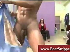Bear strippers serving...