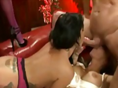 brunette, doggystyle, blowjob,
