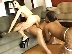 Sasha Grey and Vanessa Monet gettin a...