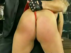 masters ass tic