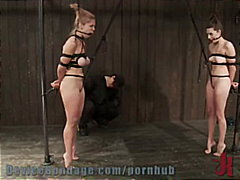 orgasm, bdsm, domination, kinky,