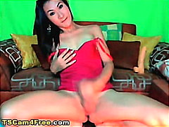 H2porn Movie:Asian Shemale Cock Stroking