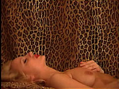 Blonde on jaguar pattern