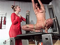 brown hair, slave, bondage,