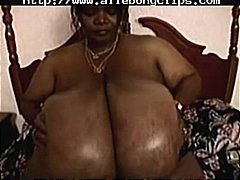 ebony, bbw, tits, interracial, boobs,