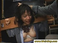 torture, asian, bondage, bdsm