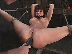 bondage, pornstar, ava devine, kinky, toys, blowjob, big tits, milf, mature, sex, asian