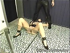 pussy, slave,