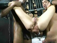 anal, interracial, bdsm,