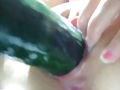 See: Lucky cucumber