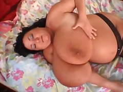 bbw, tits, big boobs