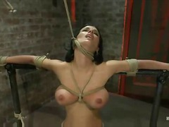 bdsm, sex toys, fingering,