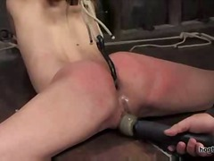 Xhamster Movie:Amber rayne tied up and fucked...