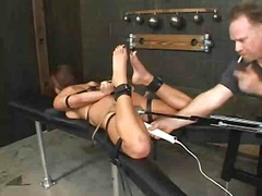 holly wellin,  bdsm, sex toys,