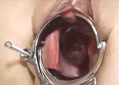 close-ups, bdsm, gaping, sex toys,