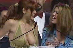 2001 AVN Awards Show - part 24