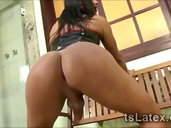 transsexual, tgirl, shemale, tranny,