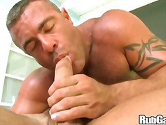 Rubgay Sweet Foreign A... preview