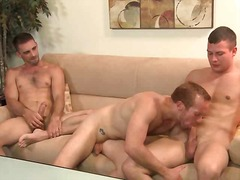 threesome, mature, sucking, guy