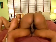 bbw, ebony, threesome, thunder katt