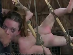 Tube8 Movie:Hazel's Slave Initiation