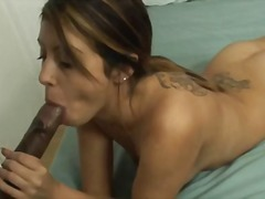 blowjob, cuckold, brunette, interracia