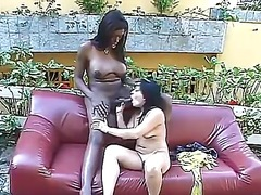 Alpha Porno Movie:Latina girl sits on huge black...
