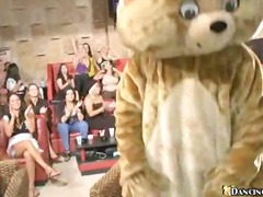 Dancing bear gives fac...