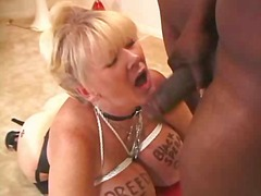 creampie, bdsm, boobs, interracial,
