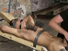 Restrained and clothespinned hunk has his cock sucked