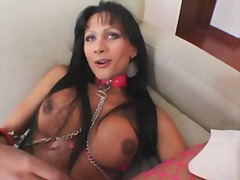 This busty tranny is waiting for you