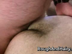 Two hairy gay dudes lo... video
