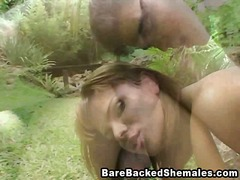 shemale, outdoors, public, college, guy,