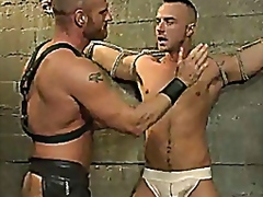 Huge dick gay tied to ... - Vporn