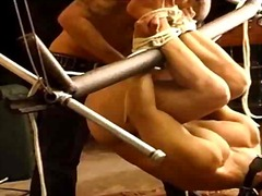 Cbt hog tied ball bash... - Ah-Me