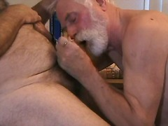 Mature studs pet each ...
