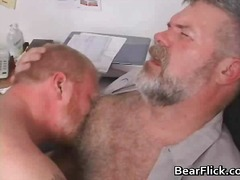 lick, bear, ass, gay, oral, mature