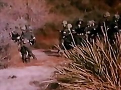 Foxholes 1982 preview