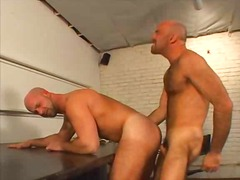 See: Sexy bears ass banging