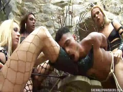 gangbang, tranny, transsexual, guy