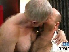 stroke, bear, softcore, mature