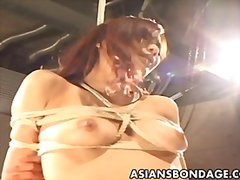 asian, couple, bondage, masturbation