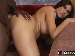 brunette, interracial, pussy, white,